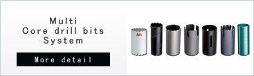 Multi Core drill bits systems